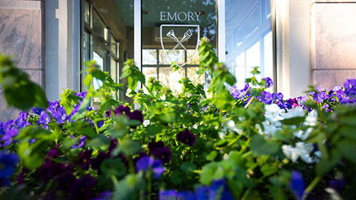 Flowers with an Emory logo in the background on a building window