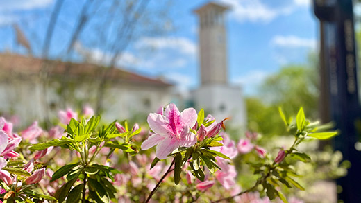 Spring day at Emory University